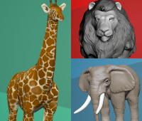 giraffe, lion, elephant